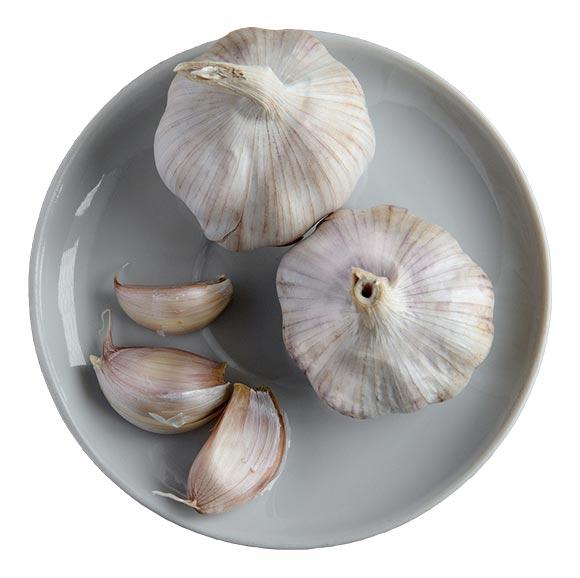 white-garlic